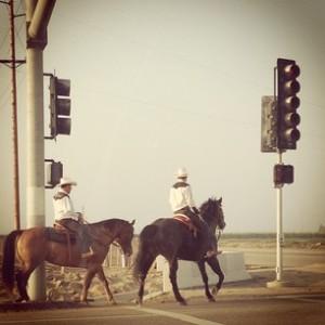 Cowboys. Yep.