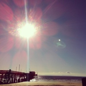 Newport Pier - The Bait Shop from The OC